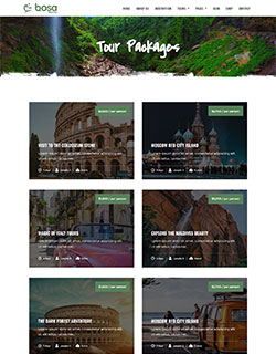 Bosa-Travel-package-250-320.jpg