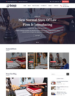 bosa-lawyer-blog-250-320