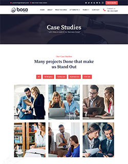 bosa-lawyer-case-studies-250-320