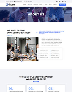 bosa-consulting-about-250-320